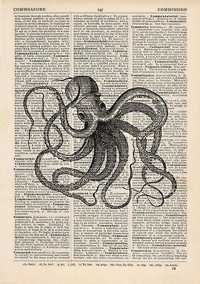 Vintage Octopus Print Picture Dictionary Art Nautical Sea Creature Beach Seaside