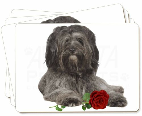 Tibetan Terrier with Red Rose Picture Placemats in Gift Box, ADTT2RP