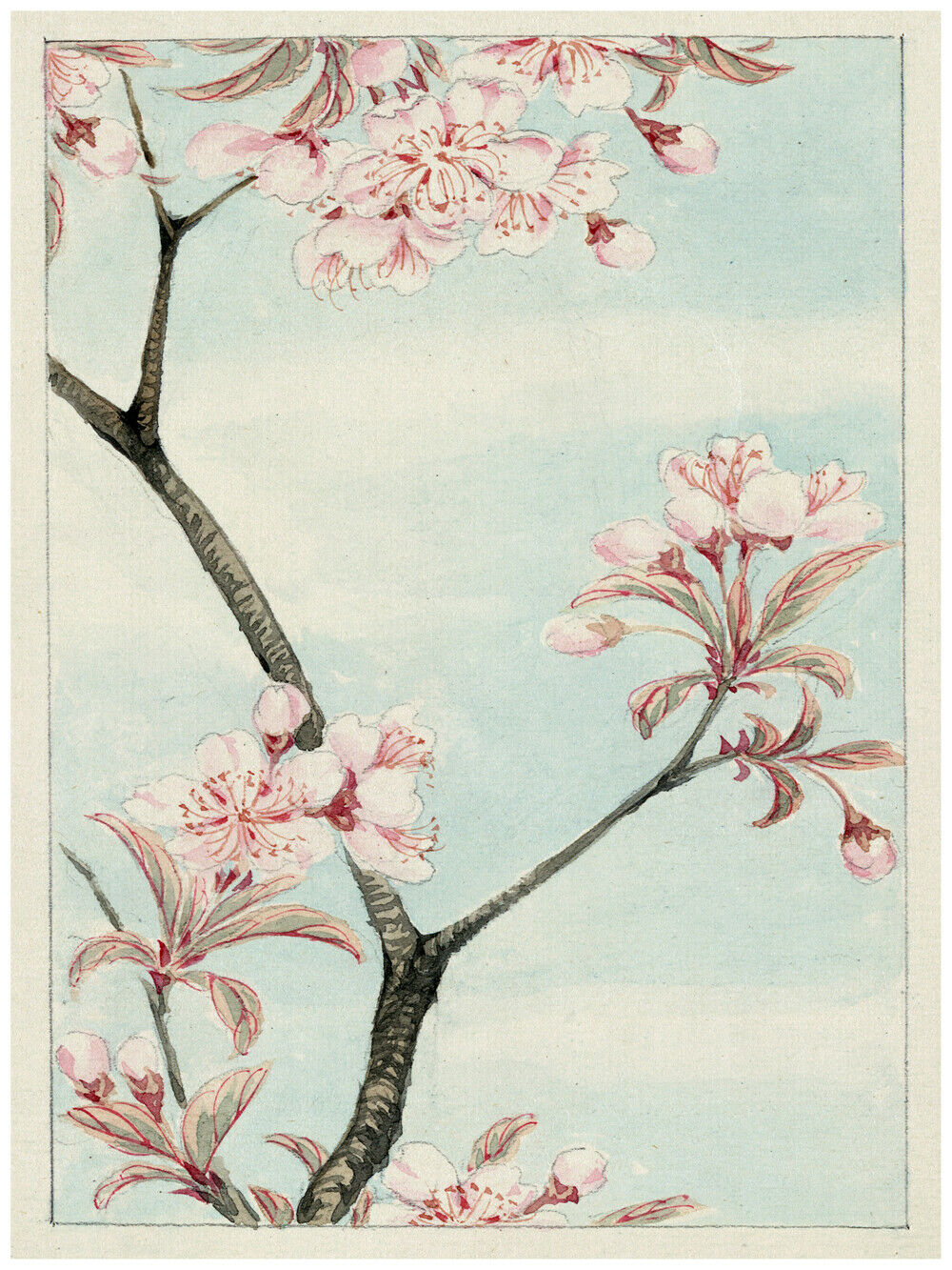 7805.Decoration Poster.Home Room wall interior art design.Japanese flower decor