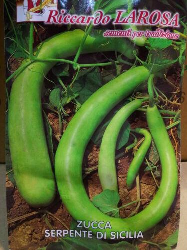 20 Pépins Citrouille Serpent Di Sicilia Graines