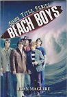 Beach Boys by Joan Maguire (Paperback, 2010)