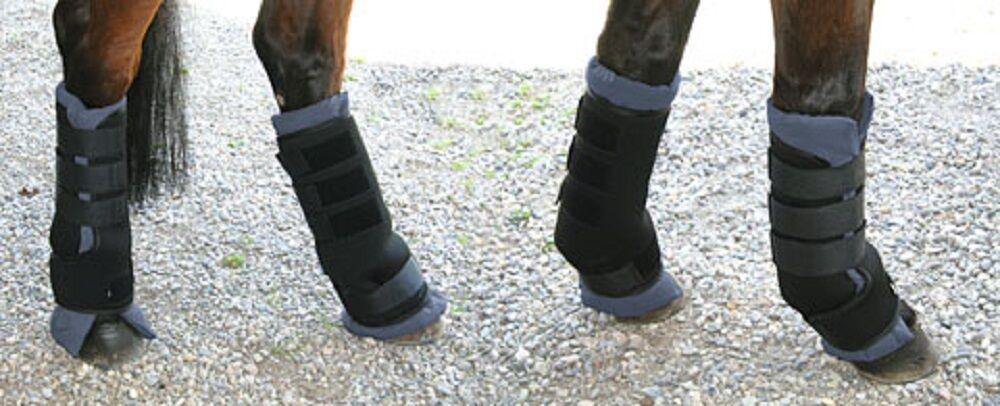 Pferde Transportgamaschen Gr.M  Neopren Gamaschen 32469