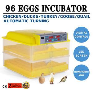 96-Digital-Egg-Incubator-Hatcher-Temperature-Control-Automatic-Turning-Chicken