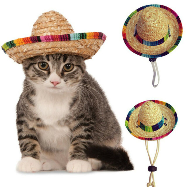 Adjustable Pet Cat Puppy Dog Straw Hat Buckle Costume Supply For Small Animals k