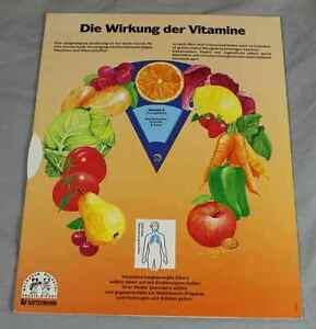 Drehschablone-Das-Atmungssystem-Die-Wirkung-der-Vitamine-f-Kinder-Eltern-220