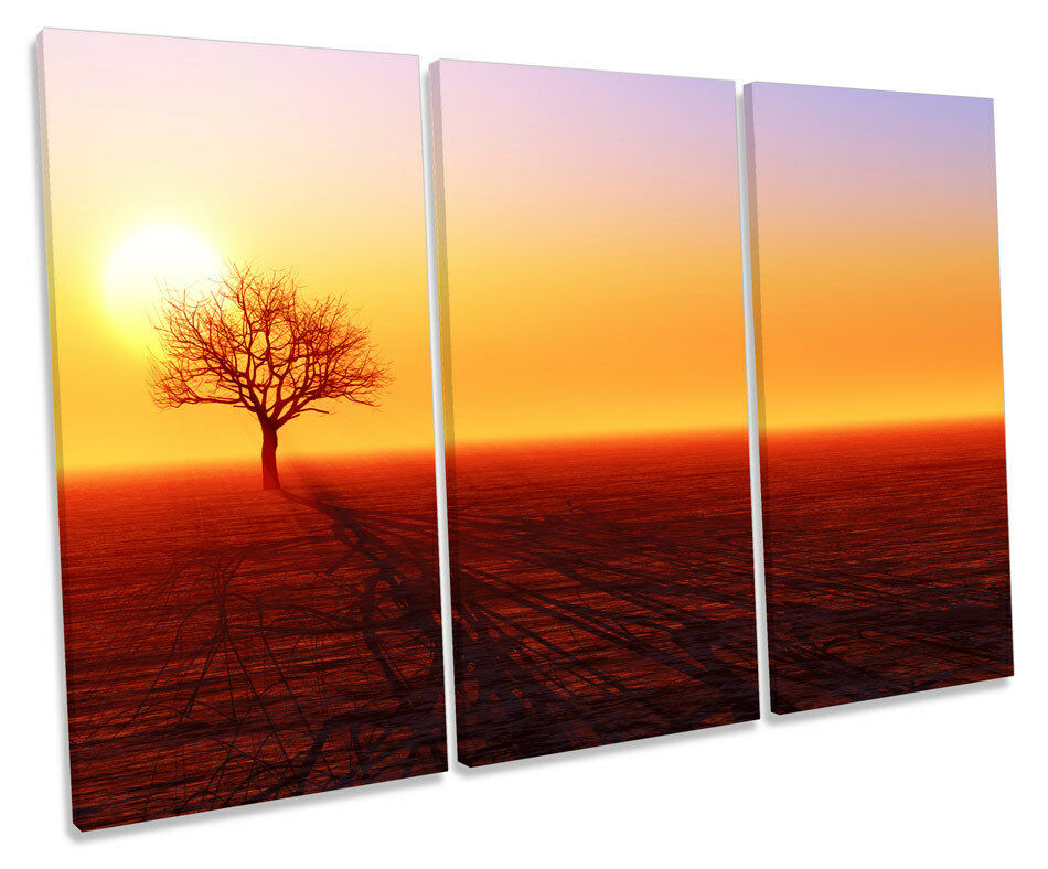 Tree Silhouette Sunset Landscape TREBLE CANVAS WALL ART Box Framed Picture