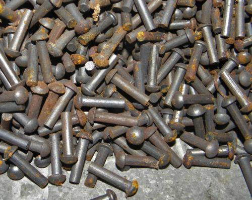 19 mm 4mm dia tige Lg s//s tete LOT de 150 RIVETS ACIER TETE RONDE
