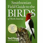Smithsonian Field Guide to the Birds of North America by Ted Floyd (Paperback, 2008)