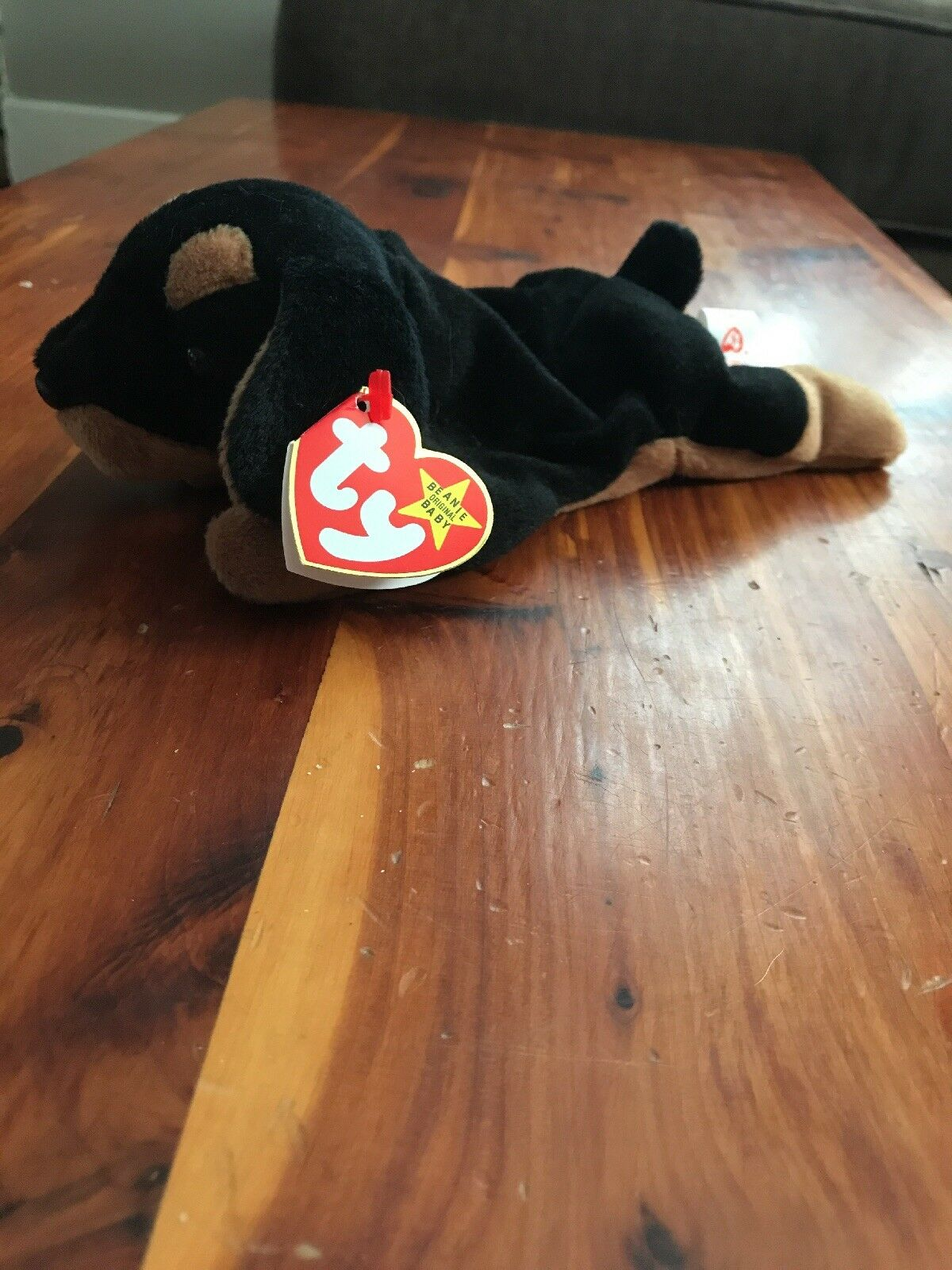 Ty Beanie Baby Doby With Tag Errors Errors Errors a49908