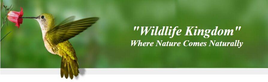 wildlifekingdom