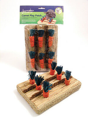 Boredom Breaker Carrot Patch Chew Toy for Rabbits, Guinea Pigs & Small Animals