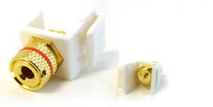 Banana-Keystone-Jack-Insert-Binding-Post-Plug-Red-Ring-WHITE-by-BattleBorn-NEW
