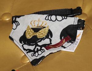 4437-Angeldog-Hundekleidung-Hundehalstuch-Hundehalsband-mit-Tuch-chihuahua-S
