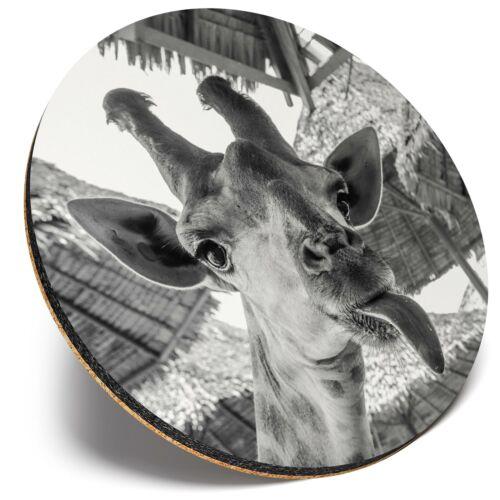 Round Single Coaster Funny Giraffe Tongue Joke  #42047 BW