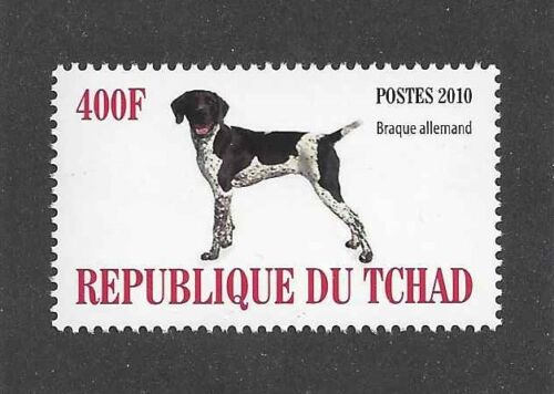 Dog Photo Body Portrait Postage Stamp GERMAN SHORTHAIRED POINTER Chad 2010 MNH