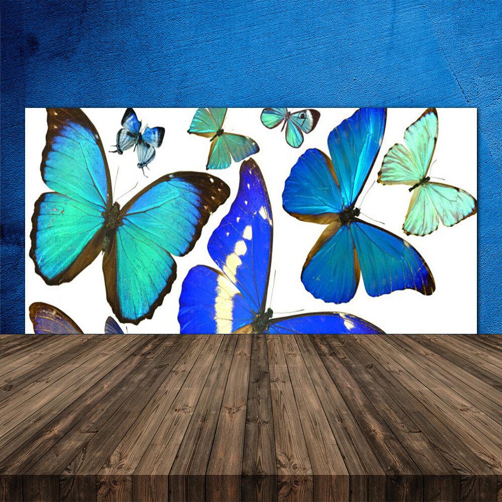 Crédence de cuisine en verre Panneau 120x60 Nature Papillon
