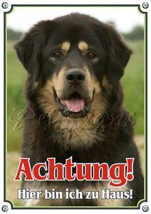 Dog Shield - Panneau d'avertissement en métal Do Khyi de qualité supérieure