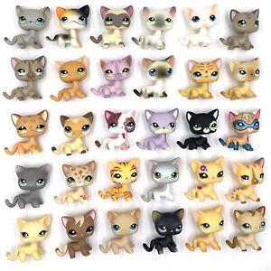 5 PCS/lot Littlest Pet Shop LPS cat short hair Kitty toys girl Christmas gift