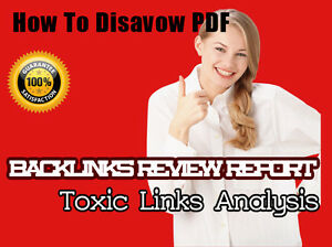 How-to-Disavow-Report-in-PDF