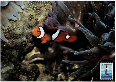Clownfisch Schmuckblatt 3.2 Exquisite Traditionelle Stickkunst