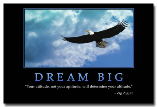 Dream Big Motivational Quotes Silk Poster Print 13x20 24x36 inch Eagle Flying