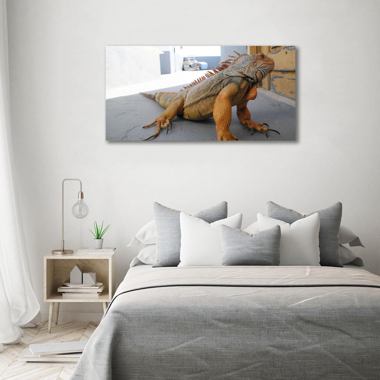 Cuadros rojo de pa rojo Cuadros  de pantalla de cristal impresión en iguana animales decorativos de cristal 140 x 70 3deef7