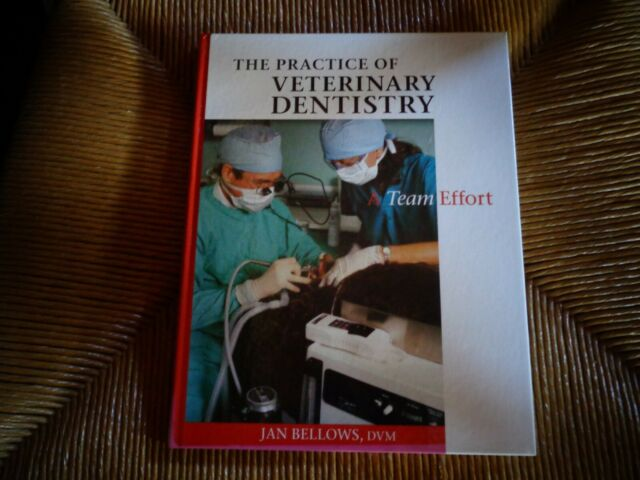 Practice of Veterinary Dentistry : A Team Effort Dogs Cats Dentist Kennel Puppy