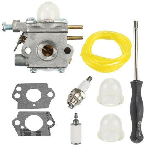 Carburetor For Bolens BL110 BL160 BL425 Murray M2500 M2510 WT-1116 Carb And Tool