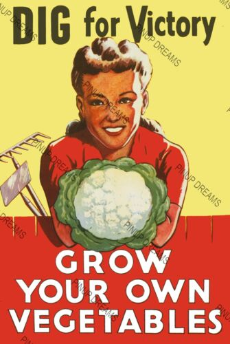 """Vintage Wartime Poster WW2 /""""DIG FOR VICTORY/""""Grow Your Own Vegetables re-print"""