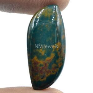 Cts. 25.60 Natural Designer Bloodstone Cabochon Fancy Cab Loose Gemstone