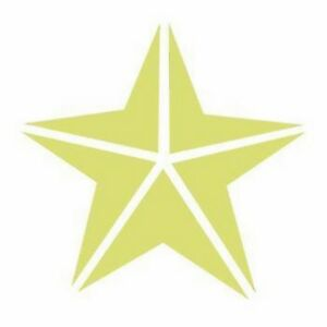 Card Making Embelishments Tag 7.5cm Star 2 Large Craft Punch 3/""