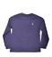 Ralph-Lauren-Boys-T-Shirt-Casual-Crew-Neck-Genuine-Real-Top-Polo-Short-Sleeves thumbnail 55