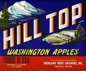 HILL TOP~ORIGINAL 1940s AUTHENTIC YAKIMA WASHINGTON OLD APPLE FRUIT CRATE LABEL