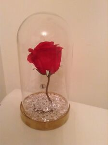 Beauty The Beast Disney Enchanted Red Rose Glass Dome Cake Topper