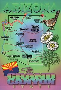 Details about Arizona, Phoenix, Tucson, Grand Canyon, Flag, Bird, etc. on us map showing grand canyon, map from phoenix to death valley, map of grand canyon and surrounding cities,