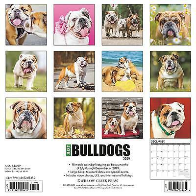 """Willow Creek Bulldogs 2020 Wall Calendar 18 Months 12/""""X12/"""" w"""