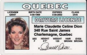 Details about Celine Dion of Quebec CANADA Drivers License - fake  identification I D  card