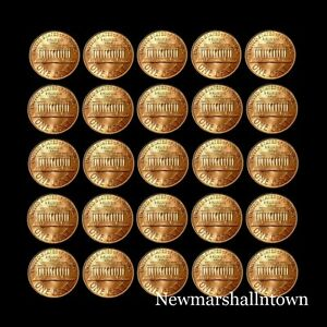 1980-1981-1982-1983-1984-1985-1986-1987-1988-1989-P-D-Lincoln-Mint-Set-Roll
