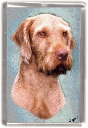 Hungarian Wirehaired Vizsla Fridge Magnet by Starprint