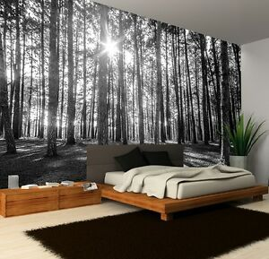 Charming Image Is Loading Wall Mural Photo Wallpaper SUNNY SPRING MORNING FOREST
