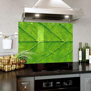 Splashback En Verre Cuisine Cuisinière Leaf Veines Structure Macro Toute Taille 0487-afficher Le Titre D'origine