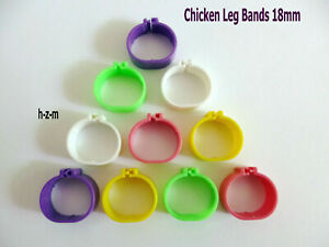 ( 100 Pcs ) Chicken  Leg Bands 18mm Chicken Poultry Rings 5 Colors