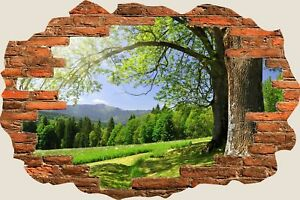 3D-Hole-in-Wall-Beautiful-Green-Meadow-View-Wall-Stickers-Film-Decal-Mural-S44