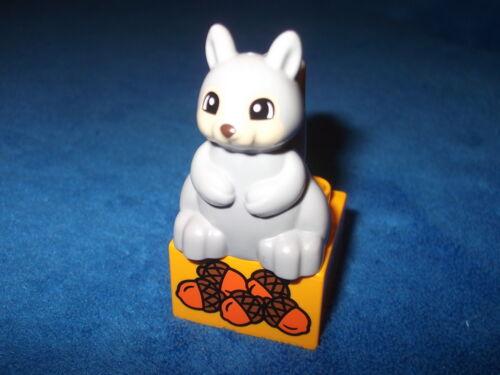 Lego Duplo Ville Arktis Zoo 1 X Eichhörnchen Grau Stein Eicheln 10803 10805 NEU