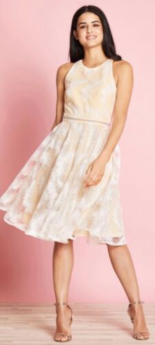 Feather Size Nuovo Sparkle Ivory 8 Print Dress Yumi qEXxBf