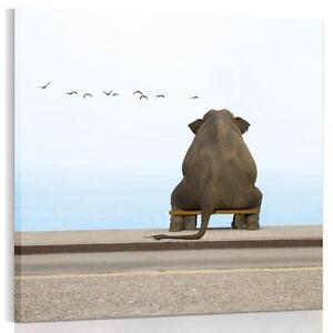 Elephant-On-Bench-Canvas-Paintings-Wall-Art-Living-Room-Sofa-Background-Unframed