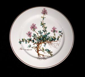 Beautiful-Villeroy-Boch-Botanica-Salad-Plate