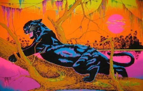 BLACKLIGHT POSTER 23X35 FLOCKED 53100 JUNGLE CAT