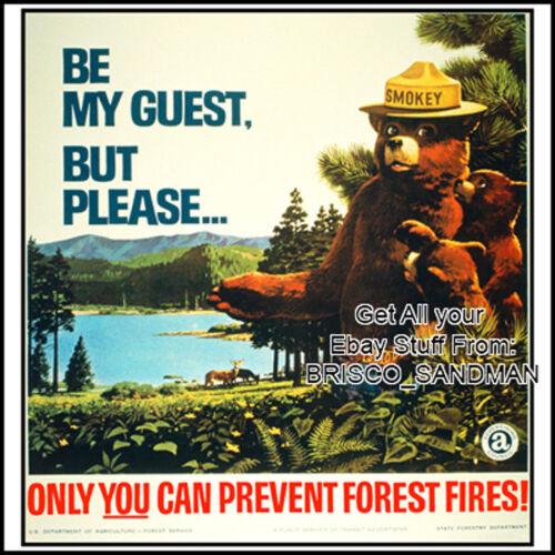 Version H Fridge Fun Refrigerator Magnet SMOKEY THE BEAR Retro AD Poster