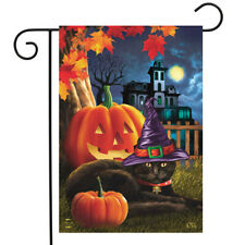 "Halloween Kittens Garden Flag Pirate Jack o/'Lantern Count Cats 12.5/"" x 18/"""